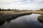 Winding Creek