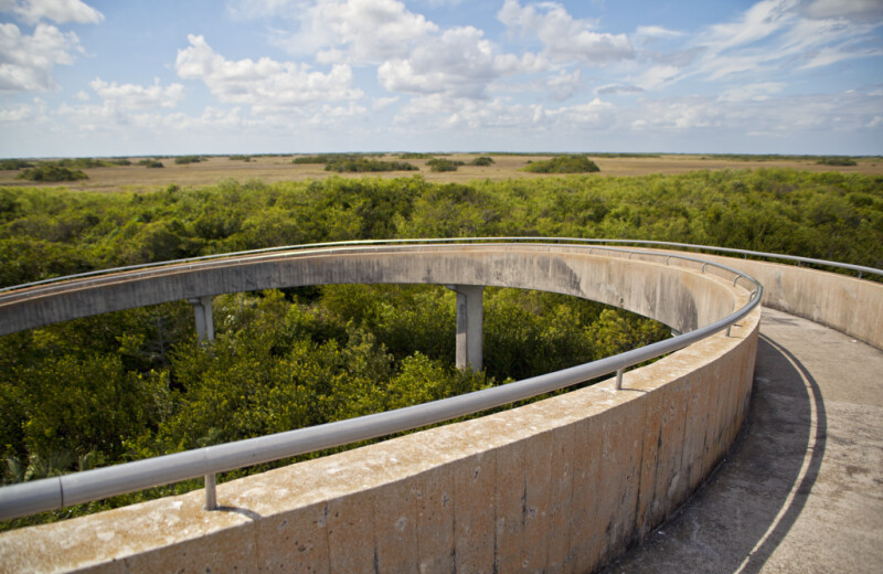 Winding Ramp at Shark Valley of Everglades National Park