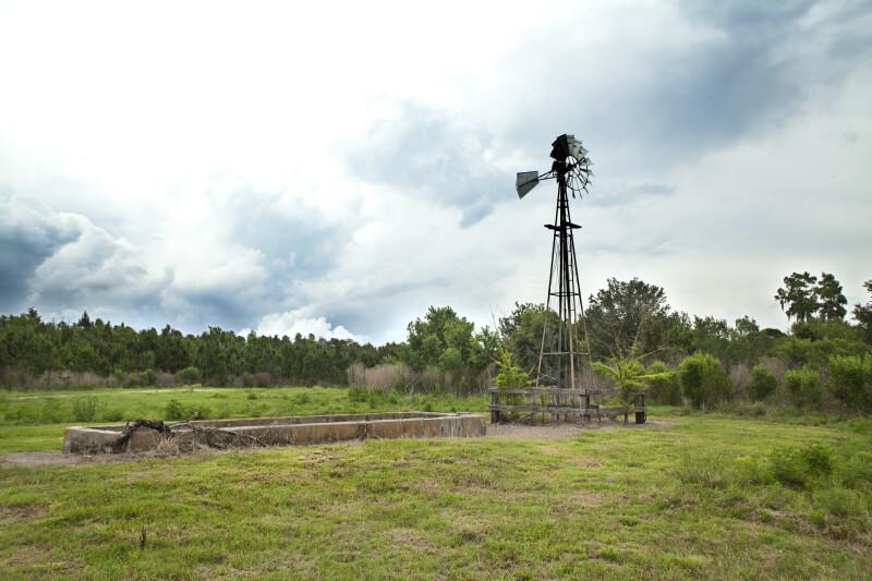 Windmill at Circle B Bar Reserve