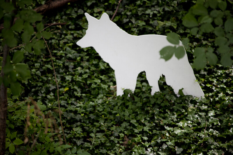 Wolf Cut-Out