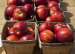 Wooden Baskets Full of Nectarines