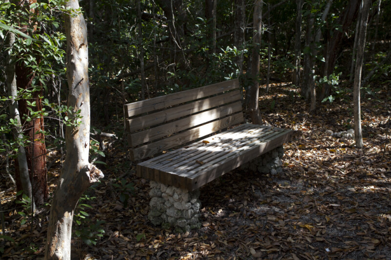 Wooden Bench with a Stone Base