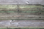 Wooden Planks at the Flamingo Marina of Everglades National Park