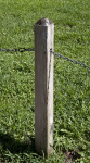 Wooden Post that has Metal Chain Running Through it