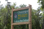 Wooden Sign at Chinsegut Wildlife and Environmental Area