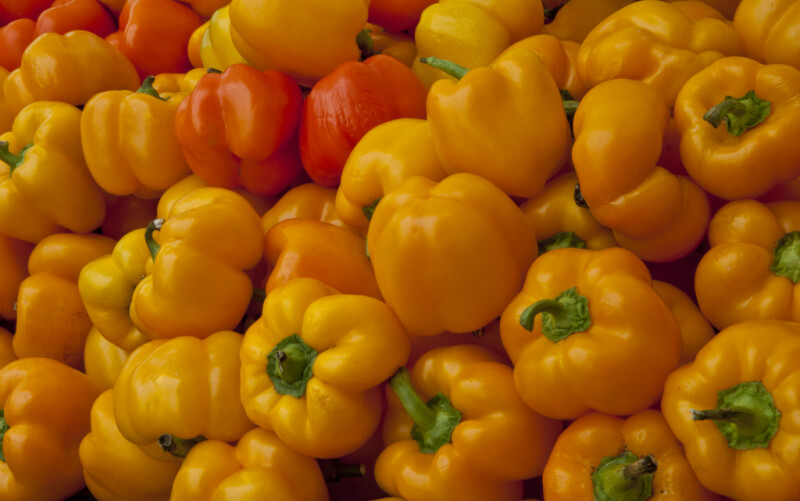 Yellow and Orange Bell Peppers at Haymarket Square