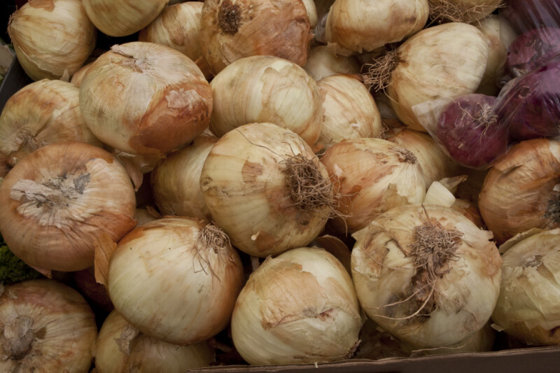 Yellow Onions on Display at Haymarket Square