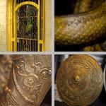 Yellow photographs