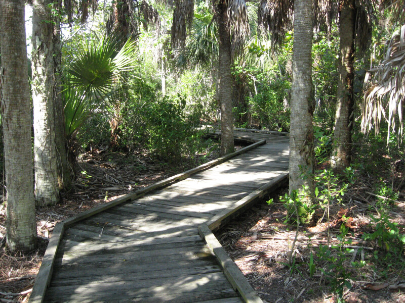 Zigzagging Boardwalk