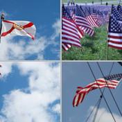 Flags & Insignia