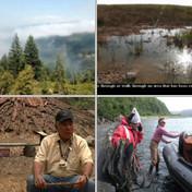 Environment Restoration