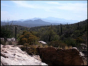 Uplands Monitoring at Saguaro National Park-East, 2009