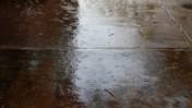 Rain like Sprinkler on Sidewalk at the University of South Florida
