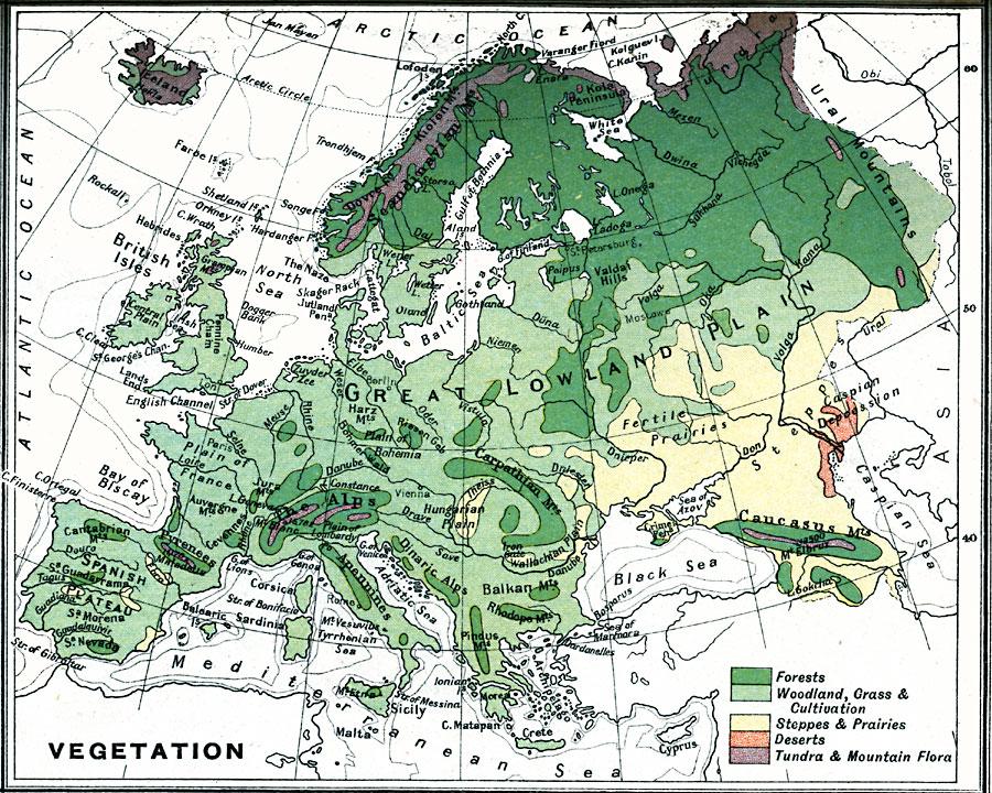 vegetation map of europe
