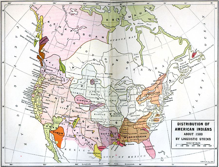 the western settlements impact on the native american populace in the history Native american history is made additionally complex by the diverse geographic and cultural backgrounds of the peoples involved as one would expect, indigenous american farmers living in stratified societies, such as the natchez, engaged with europeans differently than did those who relied on hunting and gathering, such as the apache.