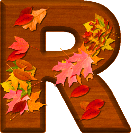 thanksgiving themed slogans