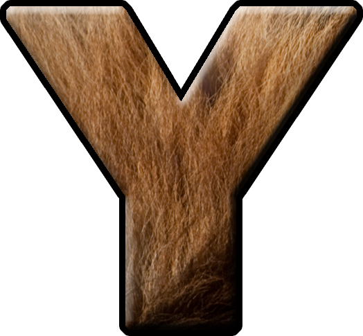 Fur  Letters