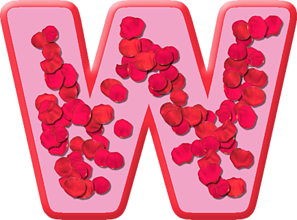Presentation Alphabets: Rose Petals Letter W