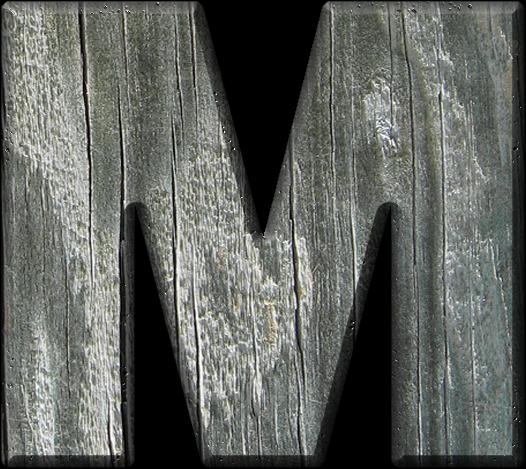 Presentation Alphabets Rough Wood Letter M