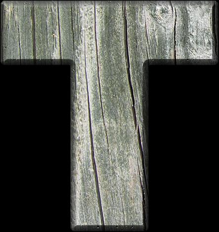 Presentation Alphabets: Rough Wood Letter T