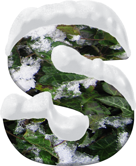 Presentation Alphabets Snow And Ivy Letter S