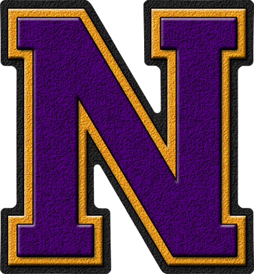 Presentation Alphabet Set: Purple & Gold Varsity Letter N