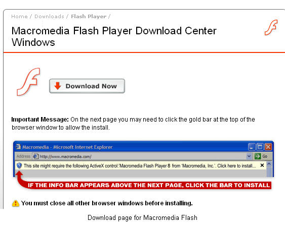 Download page for Macromedia Flash