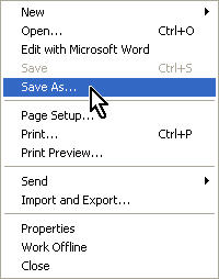File, Save As...