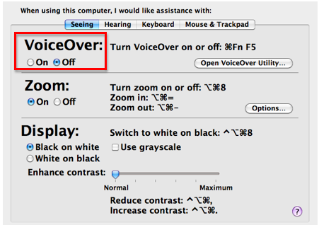Seeing pane of Universal Access window with VoiceOver section highlighted.