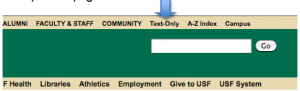 Text only link on USF home page.