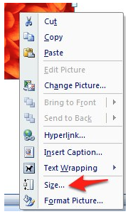 Size option in contextual menu for an image in Microsoft Word 2007.