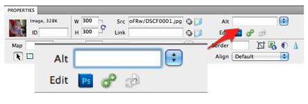 Alt text field in Dreamweaver properties inspector.