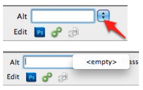 Choose empty from Alt pulldown menu for decorative images.
