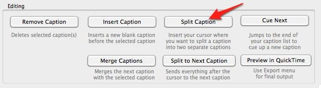 Split Caption button in MovCaptioner window.