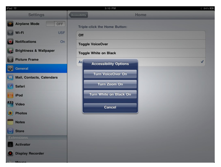 Accessibility Options popup menu.