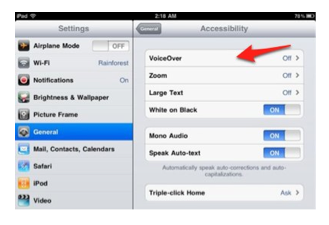 General, Accessibility, VoiceOver in Settings app.