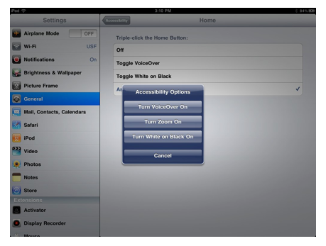 Accessibility Options popup menu with Toggle VoiceOver option.