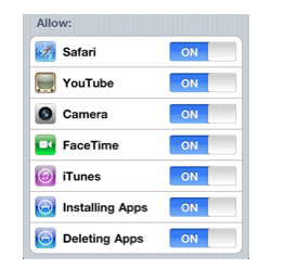 Options for Allow in Restrictions.