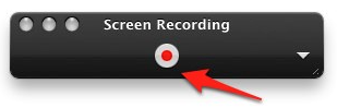 Record button in QuickTime Player controller.